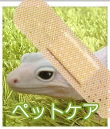 ペットケア